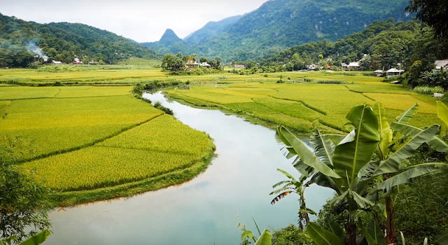Endless space of Pu Luong in the ripe rice season