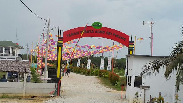 wisata Taman Agro sungai pinang