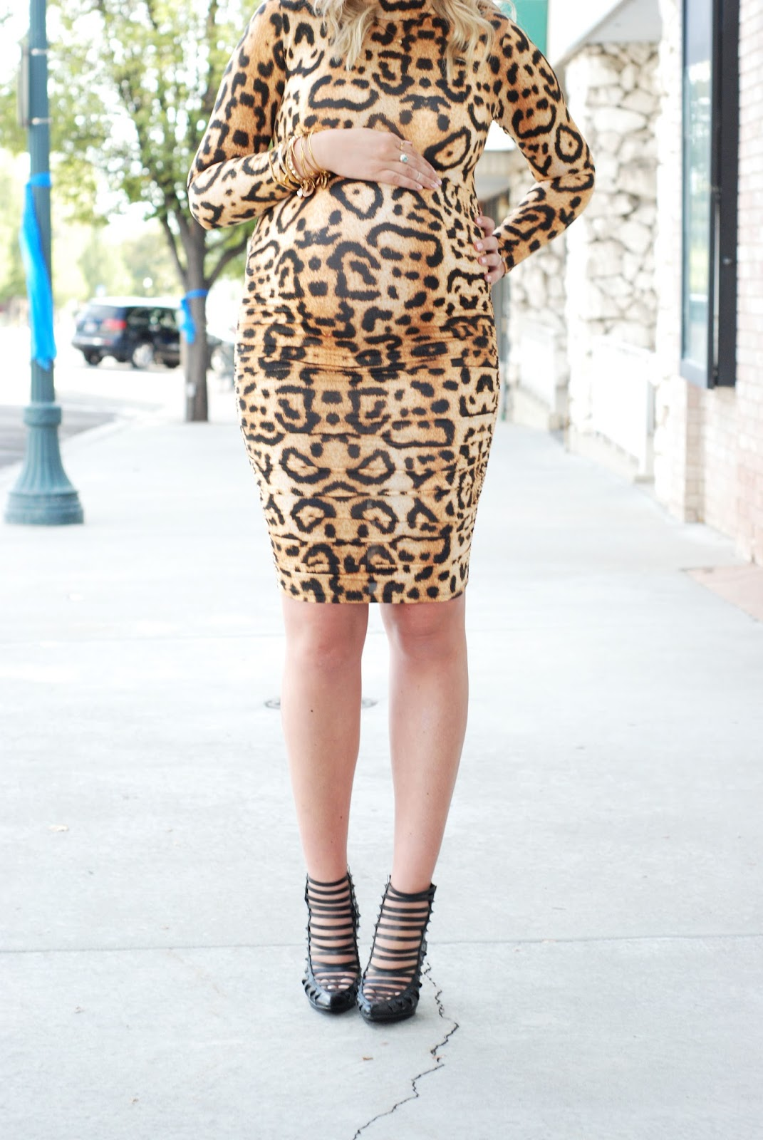 Leopard Dress, Utah Fashion Blogger, Fall Outfit