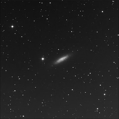 RASC Finest canted galaxy NGC 6503 luminance