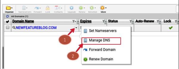 click-on-manage-dns-of-domain-drop-down-menu