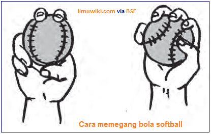 Cara memegang bola softball
