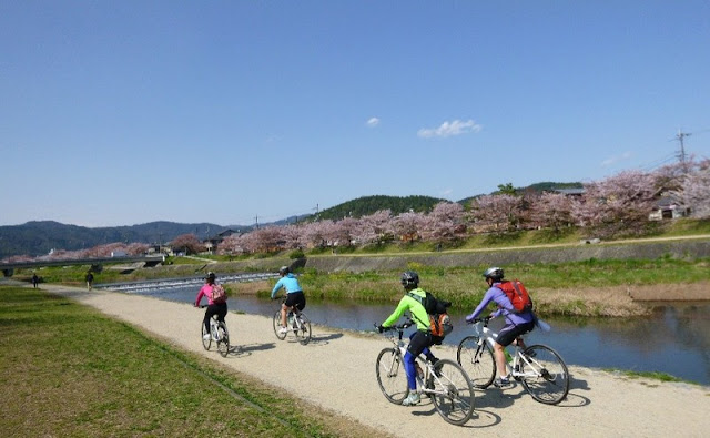 Cycling Kyoto