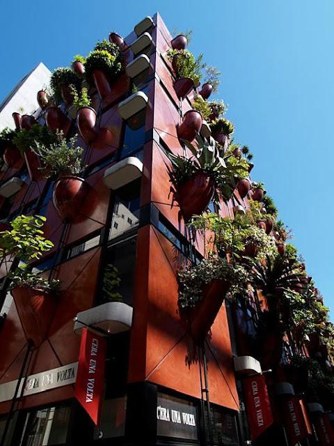edificio organico