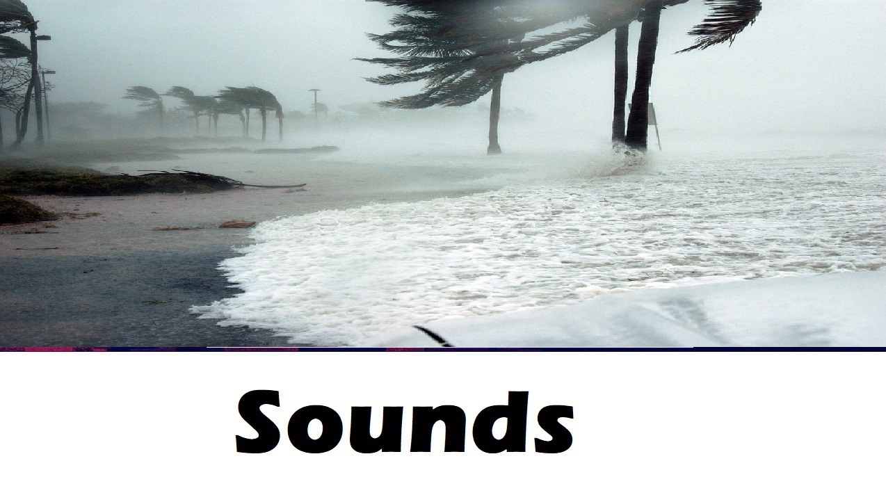 All Sound Effects: nature sound effects