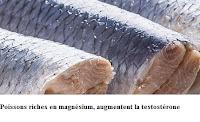 Poissons riches en magnésium, augmentent la testostérone.
