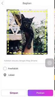 Cara Merapikan Feeds Instagram