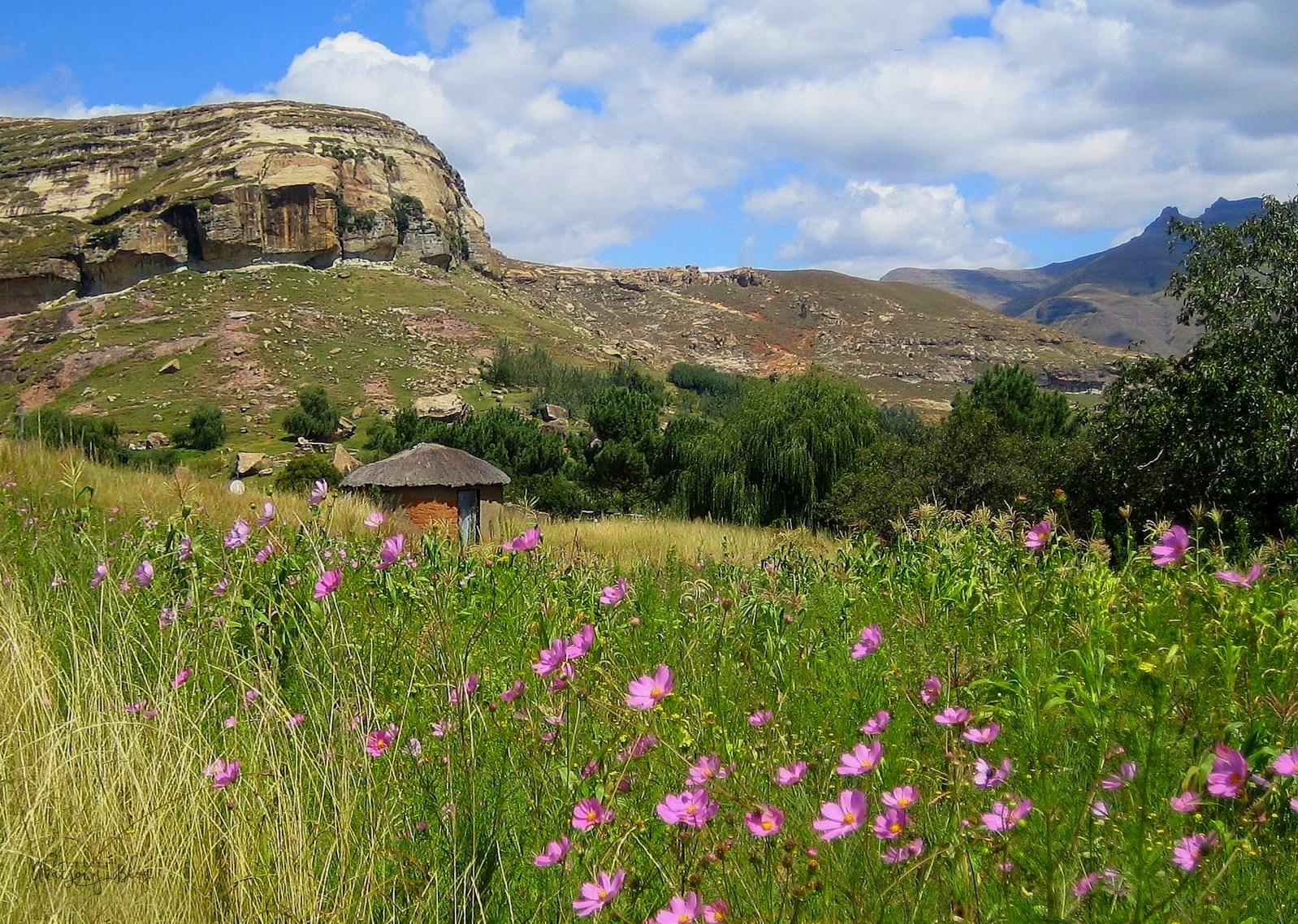 O Lesotho i nielegalnej wizycie w zapomnianym królestwie. Kulinarnie proste jedzenie - pap z chakalaką.