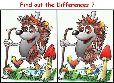 Find Out Differences on Maths Puzzle Number