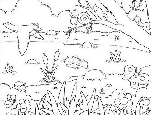 animais atividades e desenhos colorir imprimir 3 portal escola