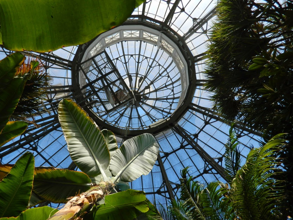 Palm House dome Allan Gardens Conservatory by garden muses-not another Toronto gardening blog