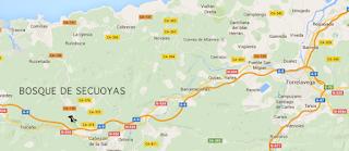 Resultado de imagen de bosque de secuoyas cantabria
