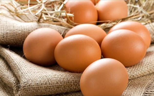 Ανδριανός: Πλήγμα για τους Έλληνες παραγωγούς οι παράνομες εληνοποιήσεις αυγών τρίτων χωρών
