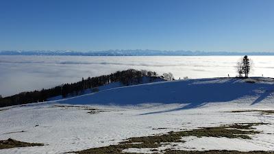 Nebelmeer von der Buchmatt aus