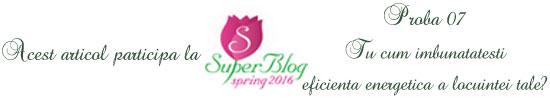 http://super-blog.eu/proba-7-tu-cum-imbunatatesti-eficienta-energetica-a-locuintei-tale/
