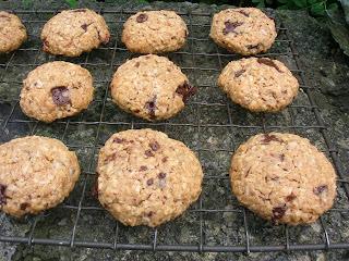 Vegan Coconut Chocolate Biscuits