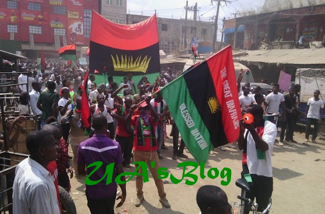 Biafra group blows hot, reveals what will happen to herdsmen in Igbo land