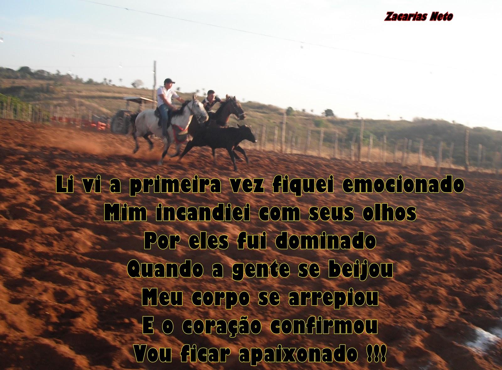 Frases De Vaqueiro