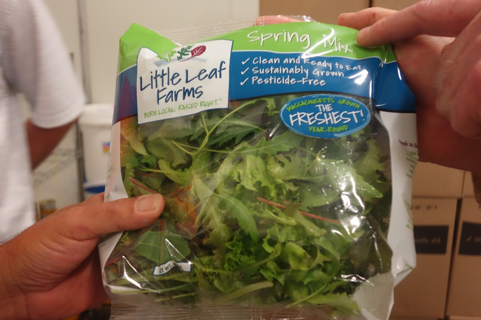The Passionate Foodie Little Leaf Farms Local Innovative Leafy