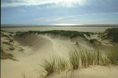 Contoh Bentukan Muka Bumi Akibat Sedimentasi