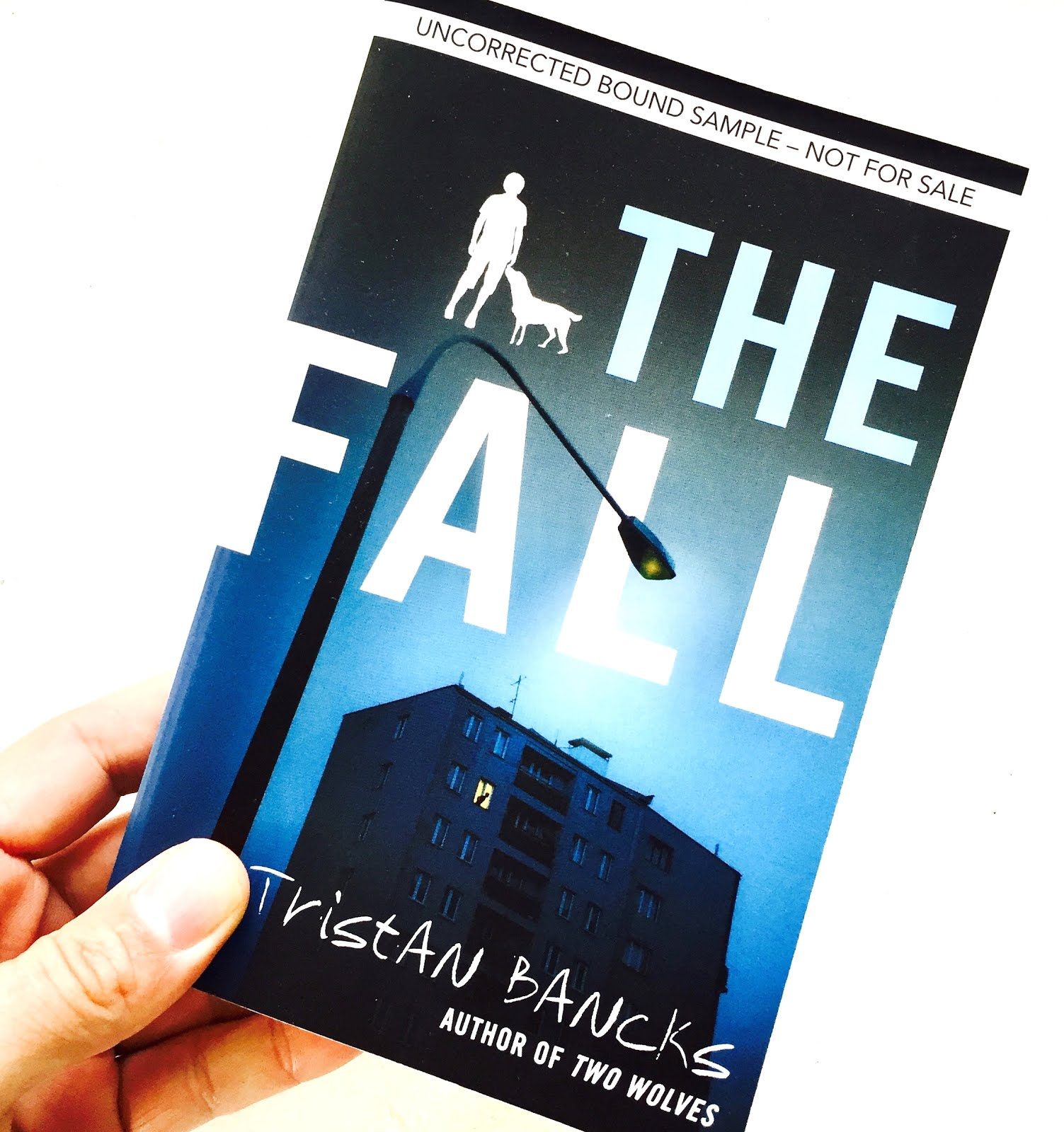 Win a copy of The Fall, a thriller novel for middle-graders