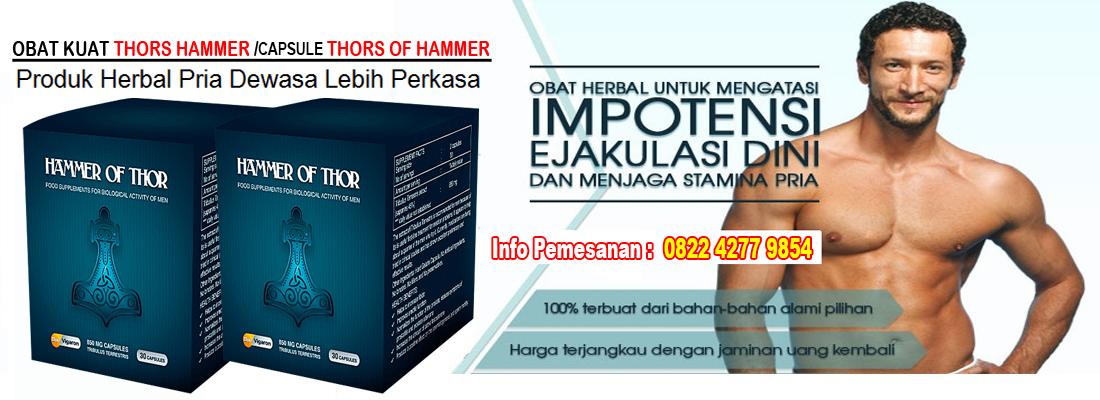 testimoni konsumen hammer distributor hammer of thor obat kuat