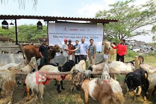 Badan Dakwah EMCL Salurkan 40 Ekor Hewan Qurban