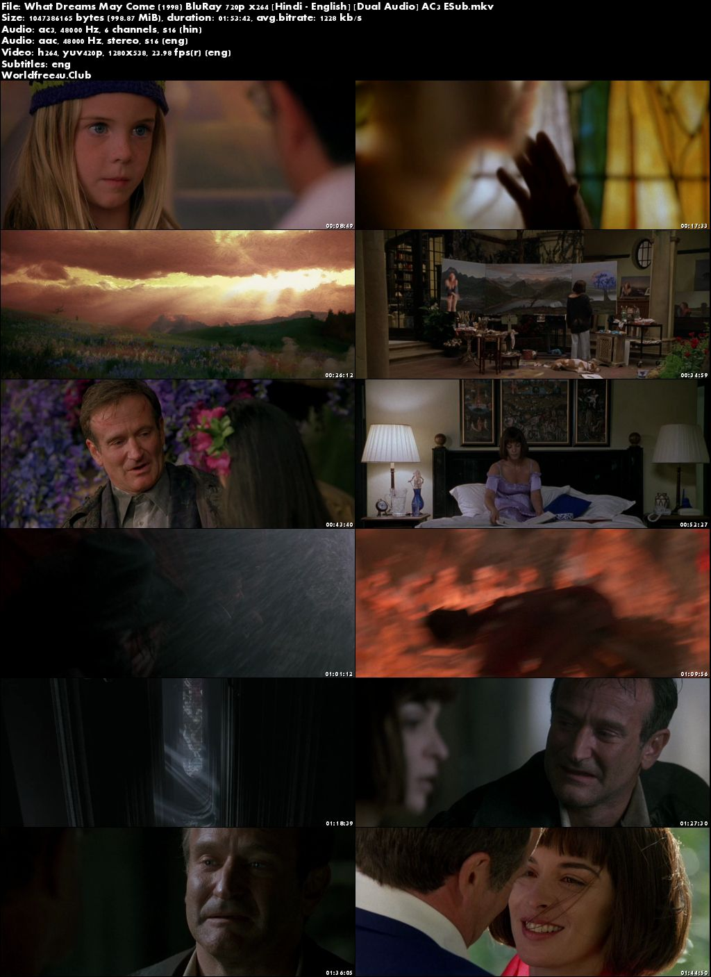 Screen Shoot of What Dreams May Come 1998 BRRip 720p Dual Audio ESub Watch Online Hindi Dubbed