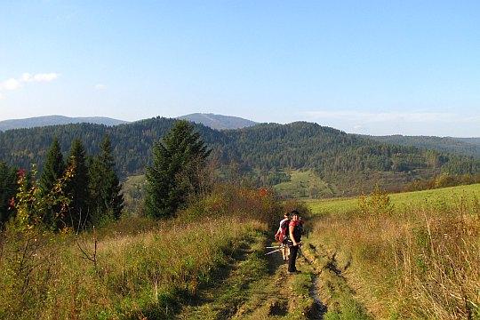 Przed nami dolina Muszynki. Widać stąd wierzchołek Jaworzyny Krynickiej.