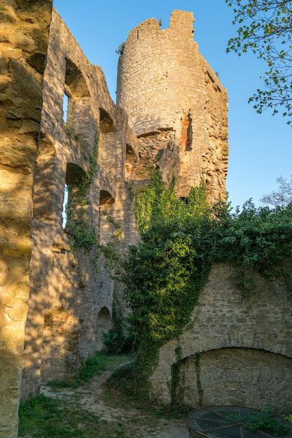 LT 17 Kur und Wein | Wandern in Bad Mergentheim | Liebliches Taubertal Weinlehrpfad Markelsheim | Wanderung um Bad Mergentheim 19