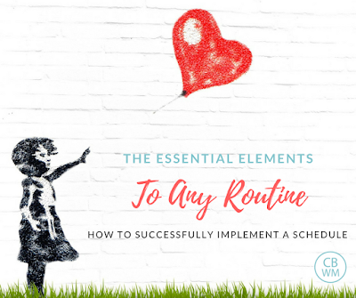 Essential Elements to Any Routine | baby routine | baby schedule | #babyschedule