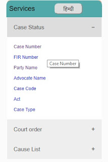How to See Case Status?