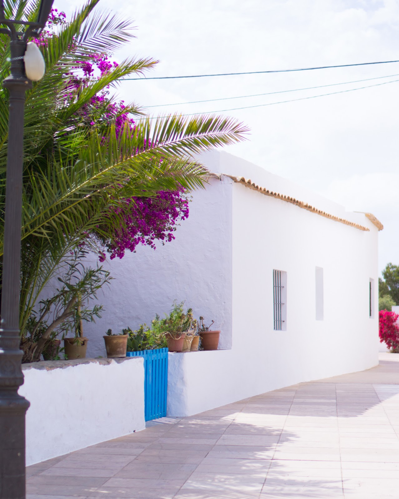 Backstage   Travel Guides Series: Formentera