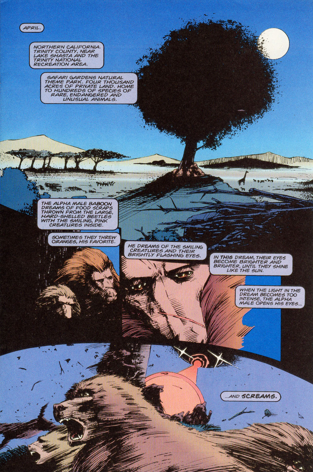 Read online Animal Man (1988) comic -  Issue #81 - 2