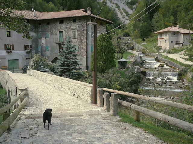 Molveno Mountain bike Trail