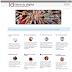 MILD – Manual de instruções para a literacia digital