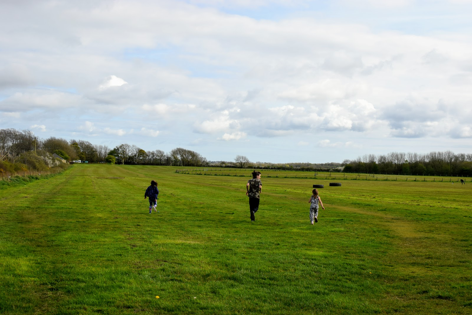 , Pembrokeshire Walks:  Haverfordwest Race Course