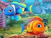تحميل لعبة حوض الاسماك Aquascapes للكمبيوتر