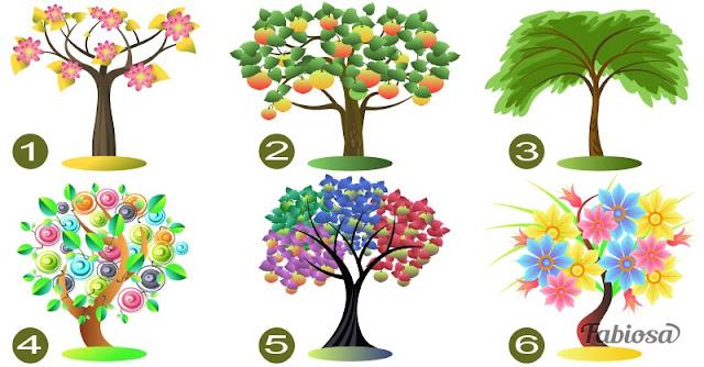 Выберите дерево, и мы расскажем, что скрывает ваша личность Фото Эзотерика улыбка счастье спокойствие реальность работа конфронтация Исцеление