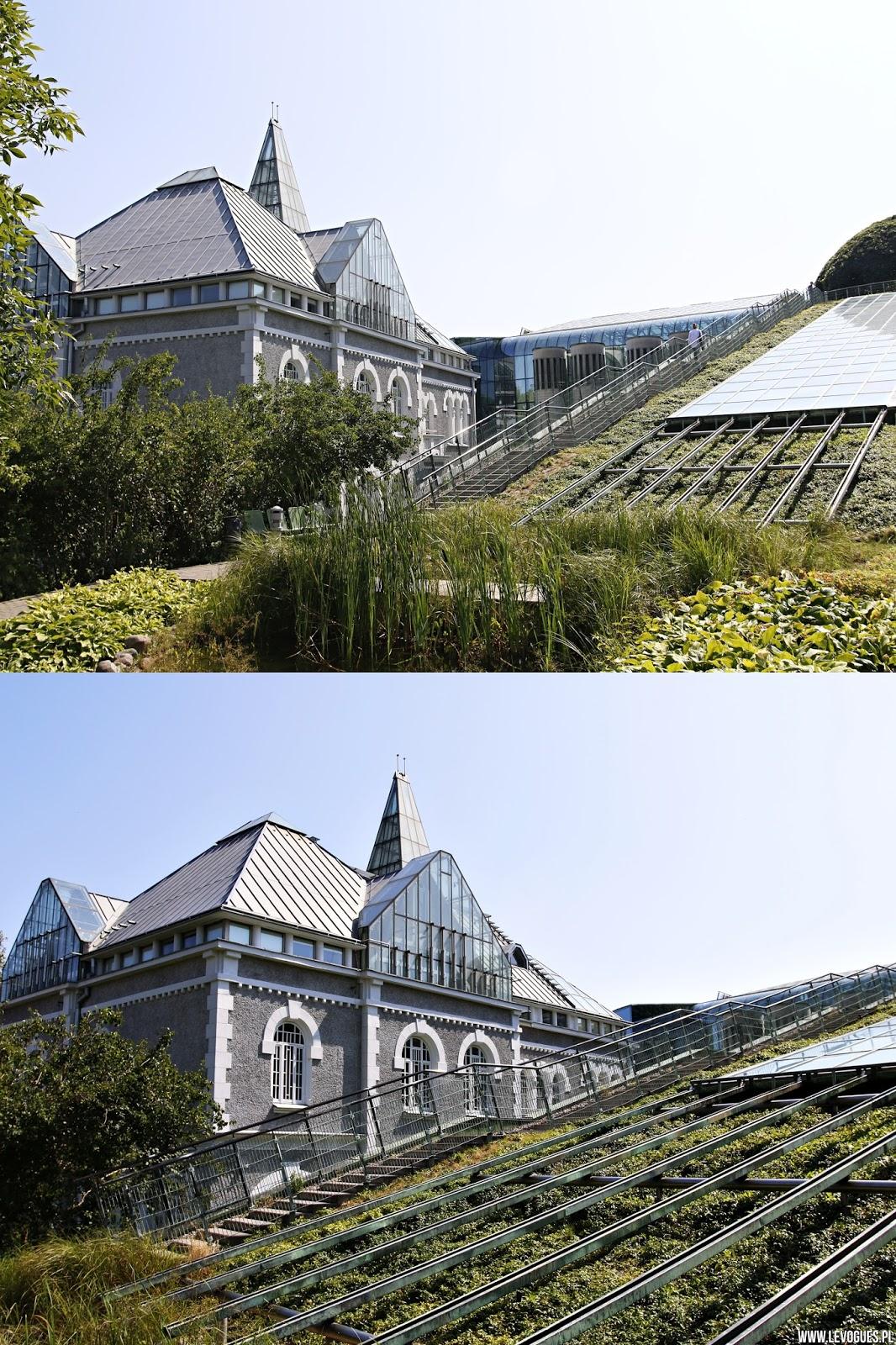 ogrody na dachu biblioteki uniwersyteckiej w warszawie