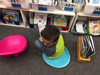 flexible seating rugs