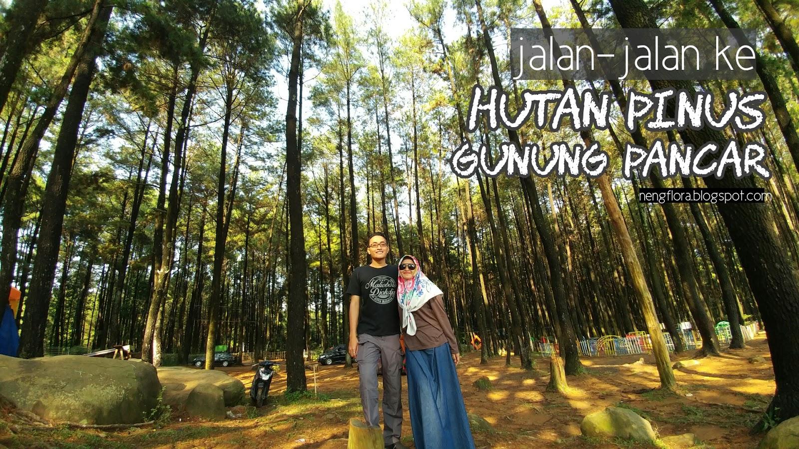 Foto-foto dan Jalan Pagi di Hutan Pinus Gunung Pancar, Sentul - Cerita Nengflora
