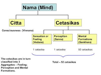 Нама-рупа (включая читта и четасика) в буддийской психологии, пожалуй, более всего соответствует когнитивной сфере психики в понимании современной психологии