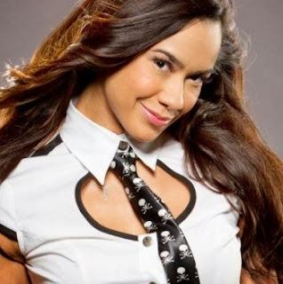 Hot New Posed Photos of AJ Lee - WWE BULLETIN