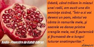 Rodia  Povestire de Kahlil Gibran