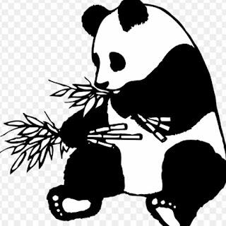 Mewarnai Gambar Kartun Panda Hitam Putih - Aneka Gambar Gambar