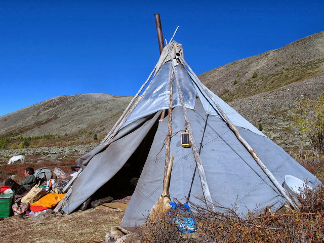 The home of the Tsaatan reindeer herders in Mongolia  - known as an ort