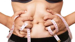 obat pelangsing penghancur lemak