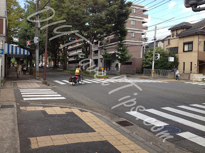 Traffic Junction along Shirakawa St