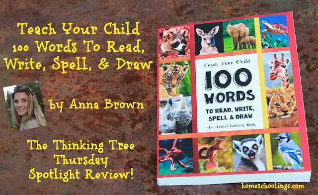 Teach Your Child 100 Words to Spell, Write, Read, and Draw Review!